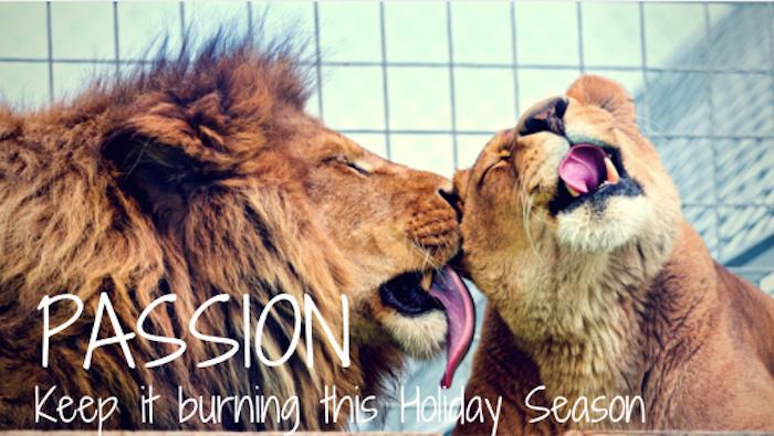 Keep the Passion Burning this Holiday Season 2