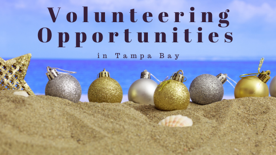 Volunteering Opportunities in Tampa Bay
